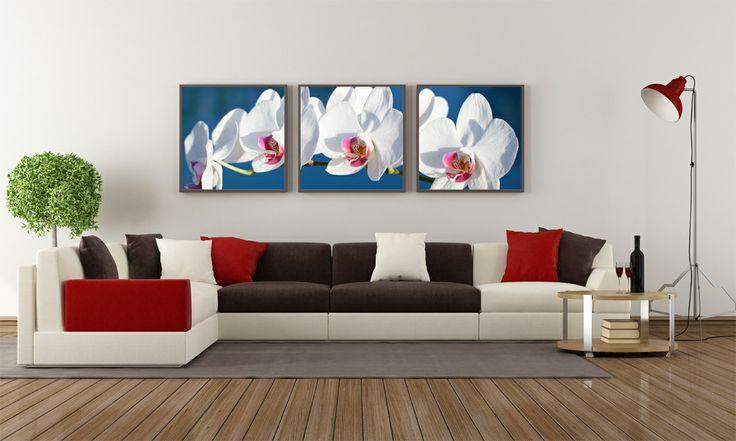 Kwiaty w salonie. Siła koloru.  #flower #kwiaty #orchidea #storczyk #obraz #canvas