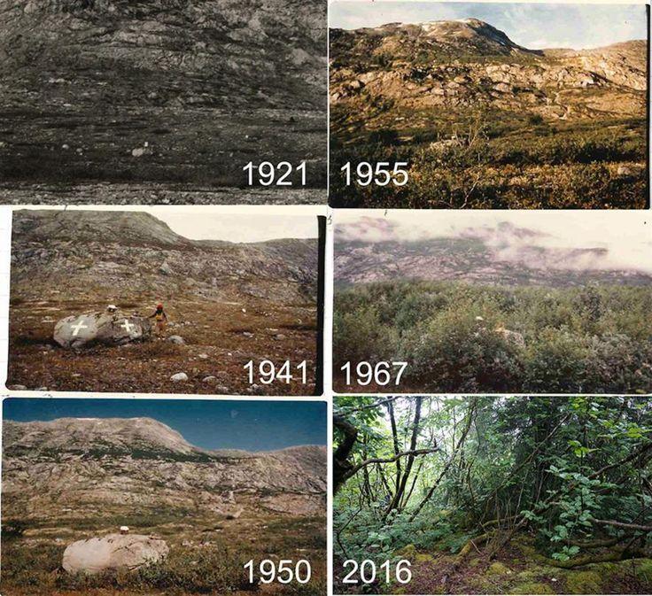 Honderdjarig onderzoek naar gletsjers biedt inzicht in klimaatverandering