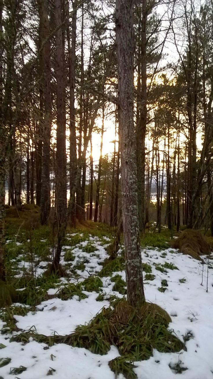 On The mountain Aksla, Aalesund, Norway
