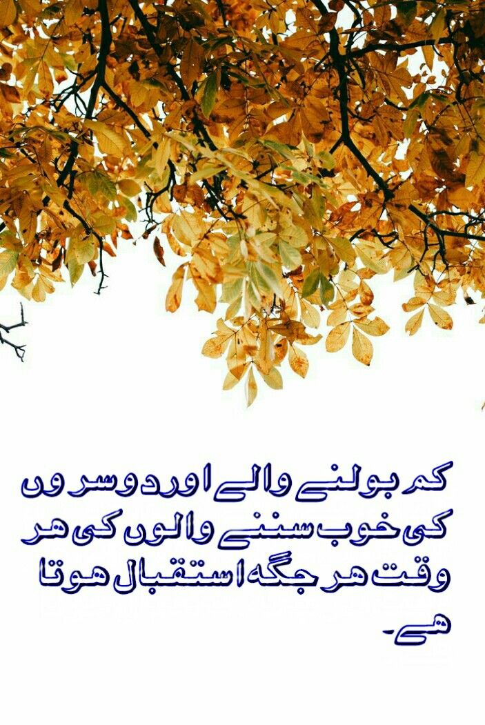 Pin by Prince on Urdu poetry (With images) Touching