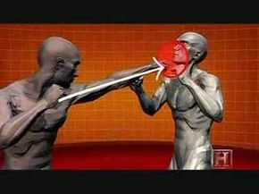 Human Weapon Human Anatomy. Fight science and martial arts Martial Arts   Techniques   Application