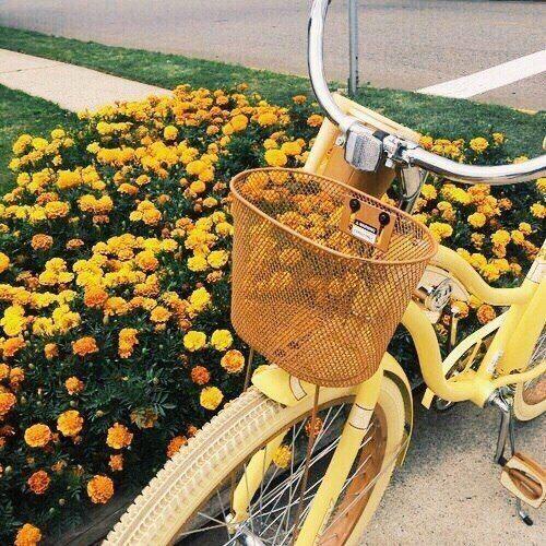 Farbtöne der gelben Farbnamen für Ihre Inspirati…