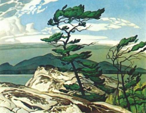White Pine as painted by Canadian member of the 'Group of 7' AJ Casson My favourite painting