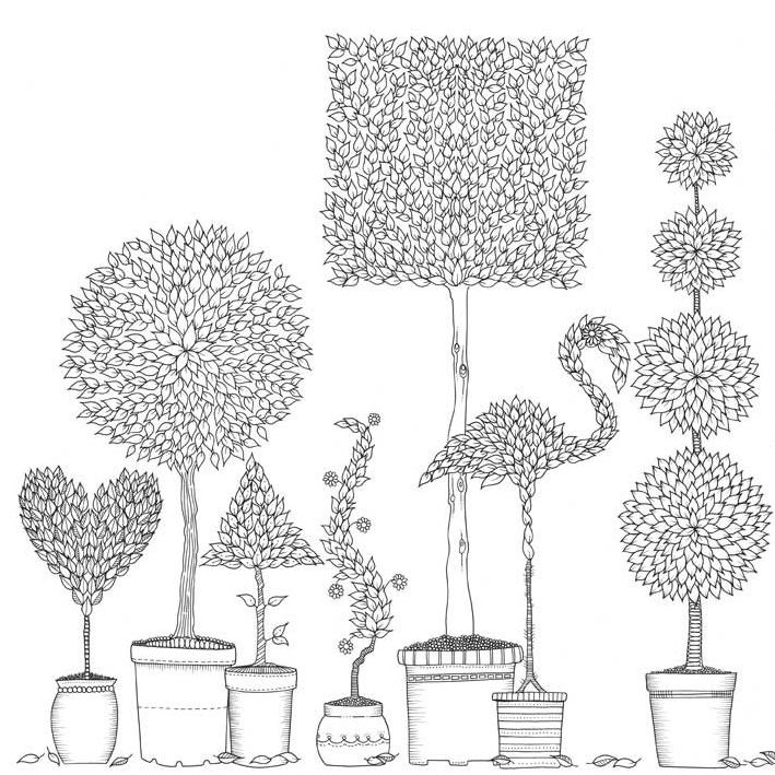 Inventive Topiary Illustration From Johanna Basfords Stunning Adult Colouring Book Secret Garden