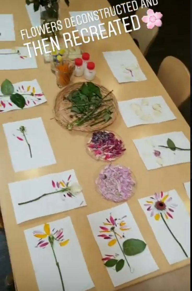 Trend infographic : Such an excellent STEAM mission for Exploring Creation with Botany: Flowers deconstructed after which recreated. Spring #kidscience
