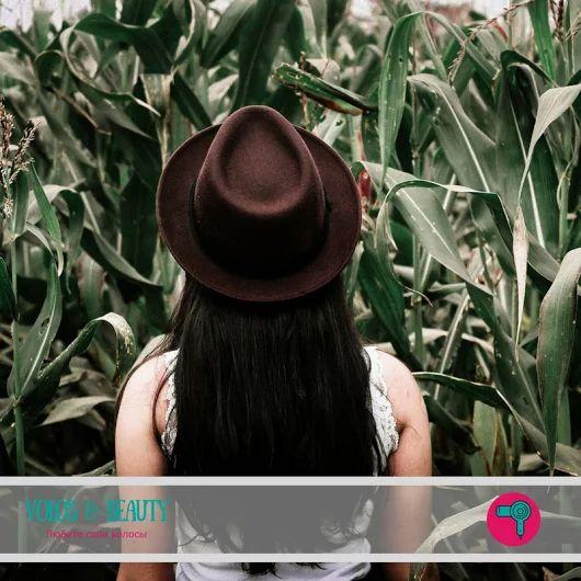 ❤Система измерения волос. А знаете ли вы, что...:❤    💁В коже головы человека находится в среднем 100–150 тысяч волосяных фолликулов. 90% из них находятс... - Елена Сергиенко - Google+