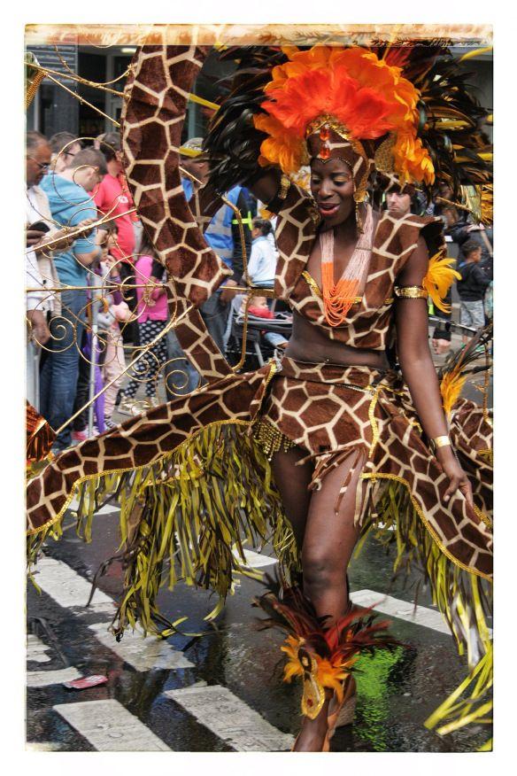 Nottingham Carnival 2014