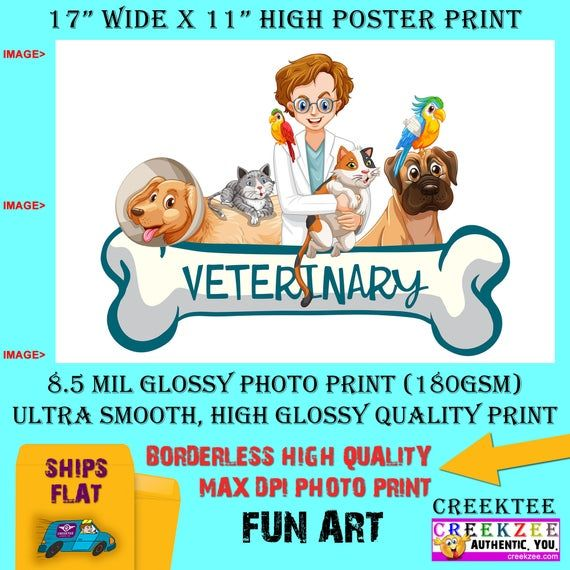11x17 Poster Photo Print Art Veterinary Vet Clinic Fun Poster Etsy In 2020 Photo Posters 11x17 Poster Photo Printing