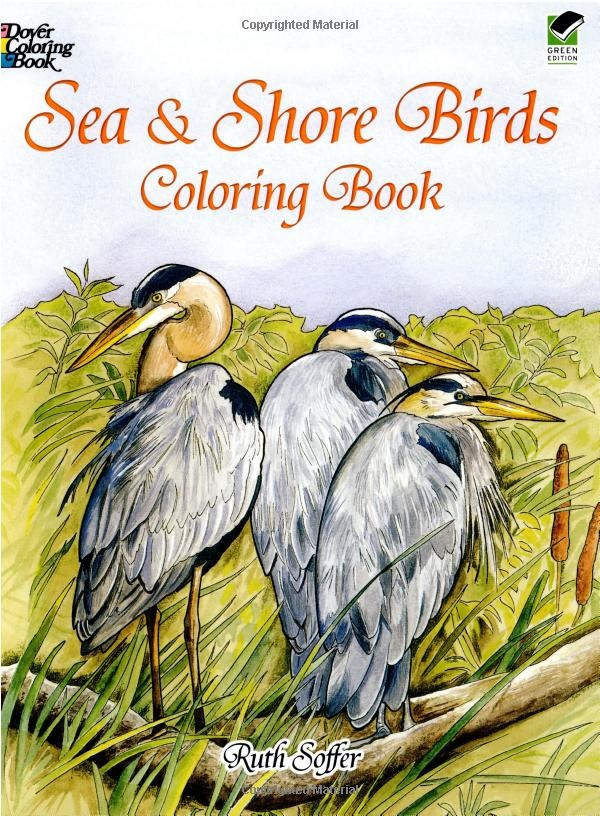 Amazon Sea And Shore Birds Coloring Book Dover Nature