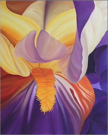 Irys 81 x 65 cm olej na płótnie
