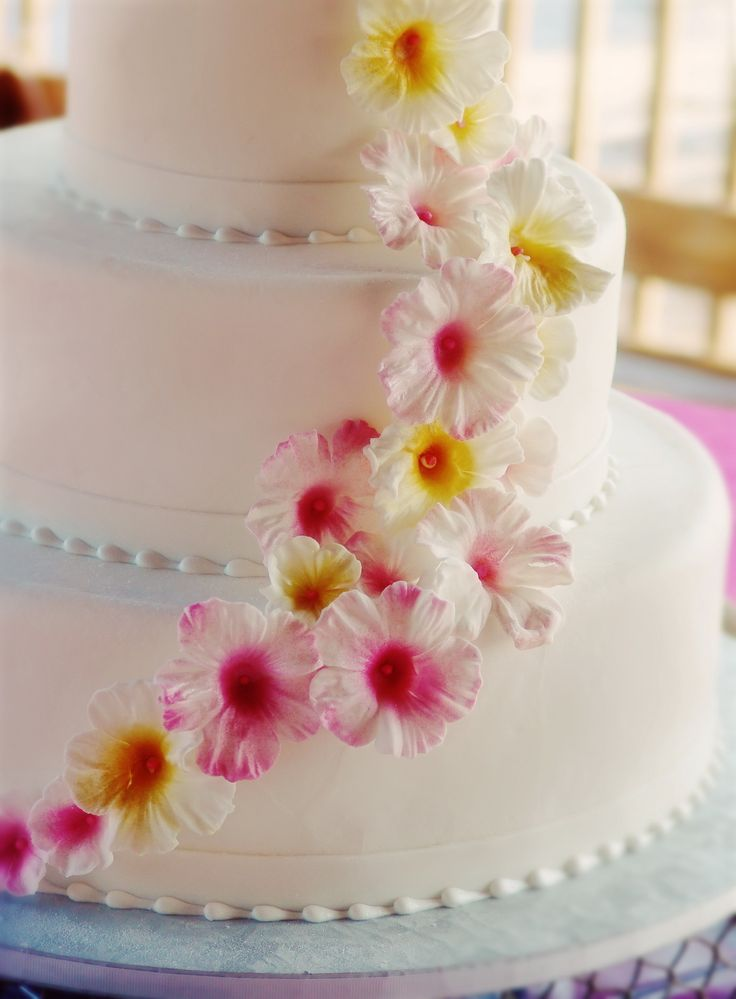 wedding cakes with prices and pictures 11 best spw ideas images on 8927