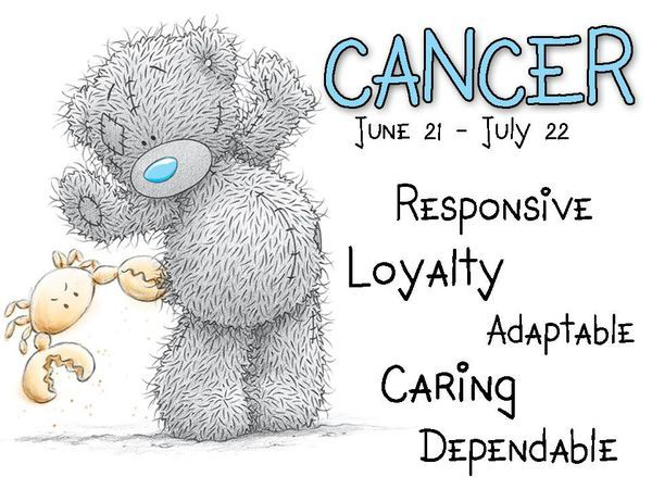 Tatty Teddy / Zodiac June 21 - July 22 / Cancer: Responsive, loyalty, adaptable, caring,  dependable.