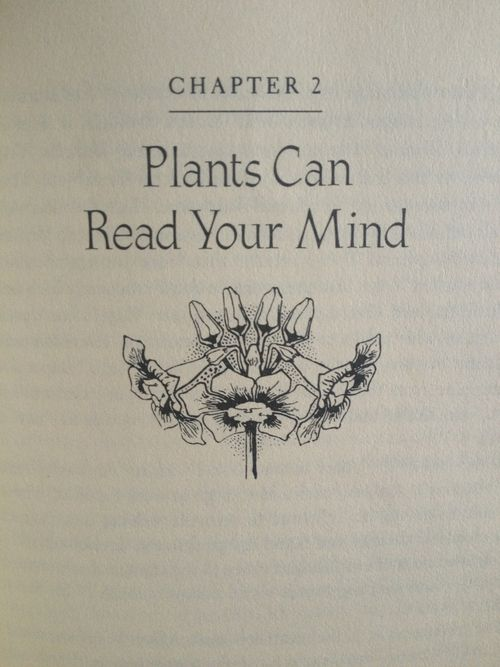Plants Can Read Your Mind  (for paranoiacs, advanced level)