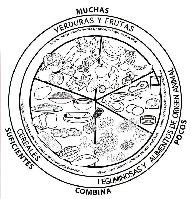 Menta Más Chocolate - RECURSOS y ACTIVIDADES PARA EDUCACIÓN INFANTIL: Dibujos para Colorear de Rueda y Piramide Alimenticia