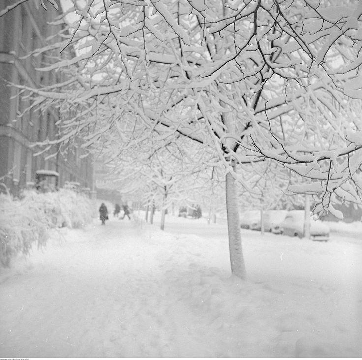 A jeszcze rok przed polską Zimą Stulecia z przełomu 1978-79 zrobiono takie piękne zdjęcie. To zima w Warszawie w 1977 roku.