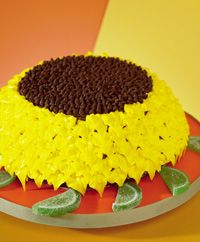 Sunflower Birthday cake – yellow icing, choc. chips in center of top, green tissue paper underneath cake?