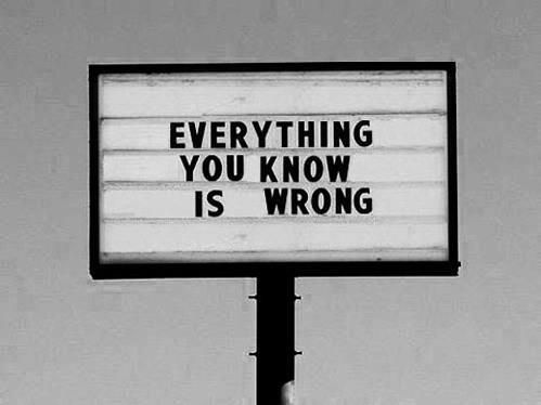 Everything you know is wrong | Anonymous ART of Revolution