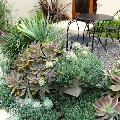 182 best Succulent garden designs images on Pinterest | Succulents ... - how to design a succulent garden