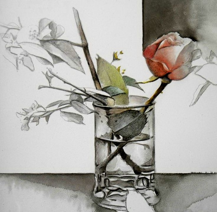 Схема вышивки «роза акварель» - Вышивка крестом