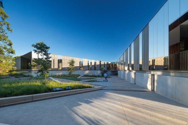 The garden contrasts sharply against the sweeping forms of the PlantBank building designed by BVN.