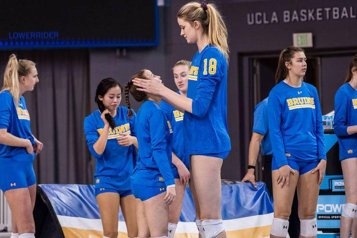 Volleyball: Meet the eight new additions to the Badgers