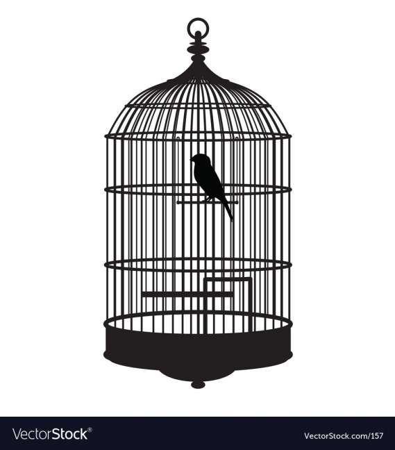 10 Bird Cage Vector Vector Free Bird Cage Diy Screen Printing