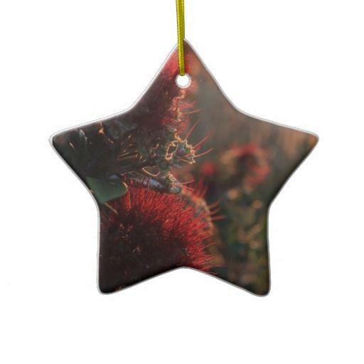 Red Pohutukawa tree flowers New Zealand Christmas Ornaments