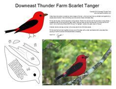 scarlet tanager -- to make for my Christmas tree
