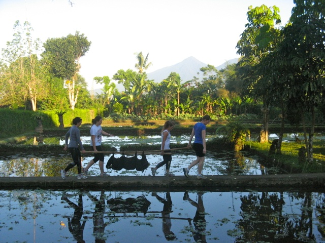 early morning fitness sessions amongst the rice paddies  - perfect start to the day