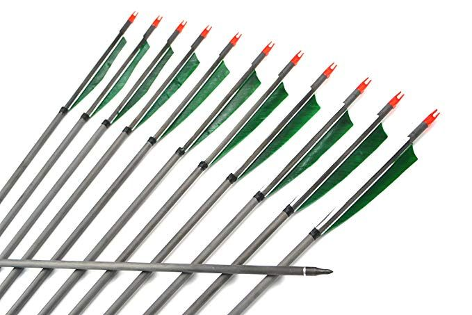12Pcs Archery Hunting Carbon Arrows Screw Tip for Hunting Compound Recurve Bow