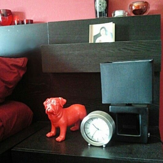 Turn on the light on the time of the red dog.
