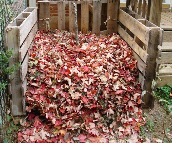 Ako si pripraviť kvalitný kompost z listov stromov