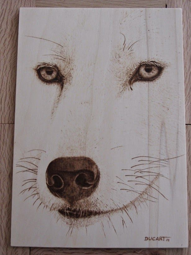 Pirograbado lobo rtico by Ducart Contrachapado de