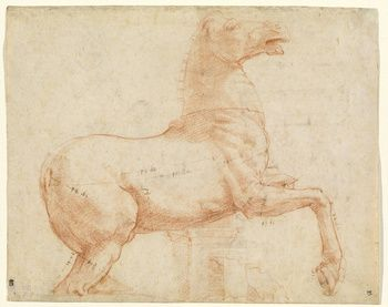 A Marble Horse on the Quirinal Hill [recto]