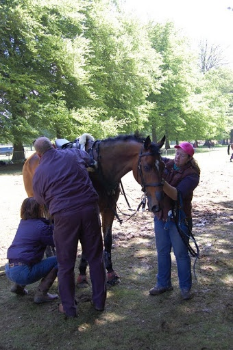 Jackie and Owner Richard Ames helping after XC
