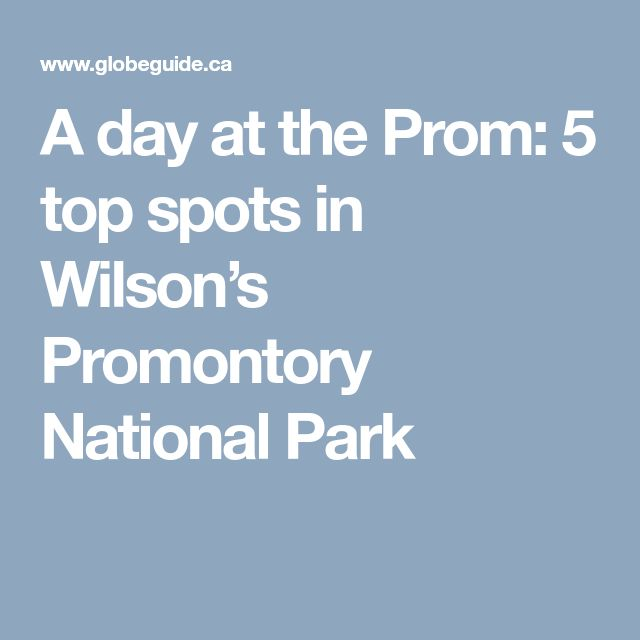 A day at the Prom: 5 top spots in Wilson's Promontory National Park