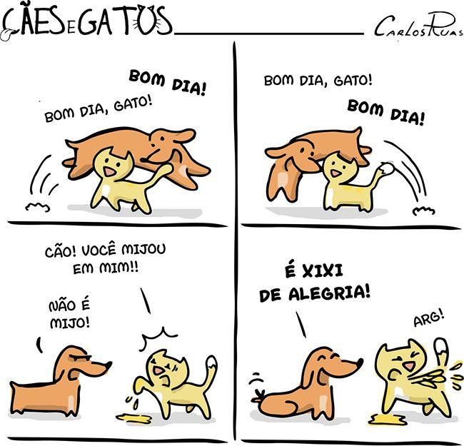 Cães e Gatos – Xixi de alegria!