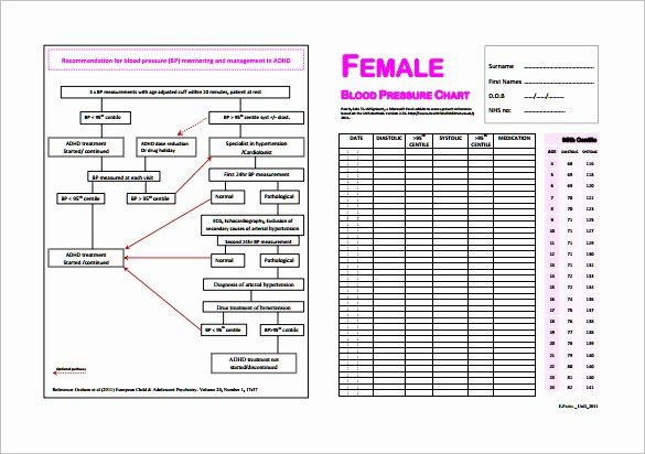 Pin On Sample Charts And Graphs Templates