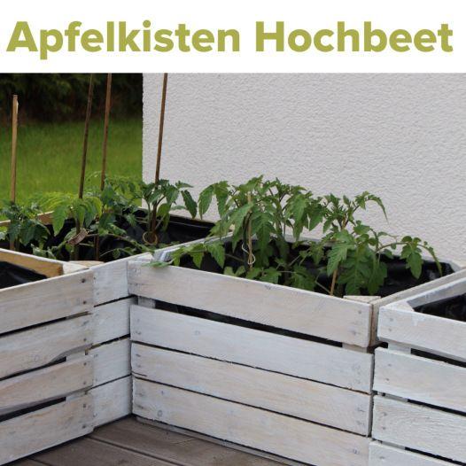 Obstkisten Upcycling Hochbeet Gemüsepflanzen
