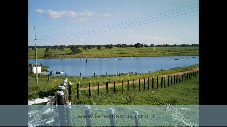 Fazenda à venda 1.206 Ha município Rochedo - MS.