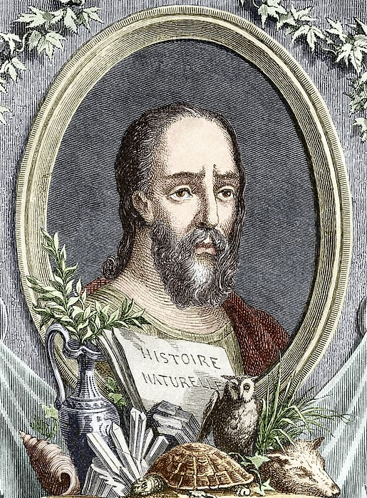 Pliny (Plinius) the Elder (23-79 AD), Roman naturalist and author, shown with some of the animals, minerals and plants described in his 37-volume encyclopedia Historia Naturalis.