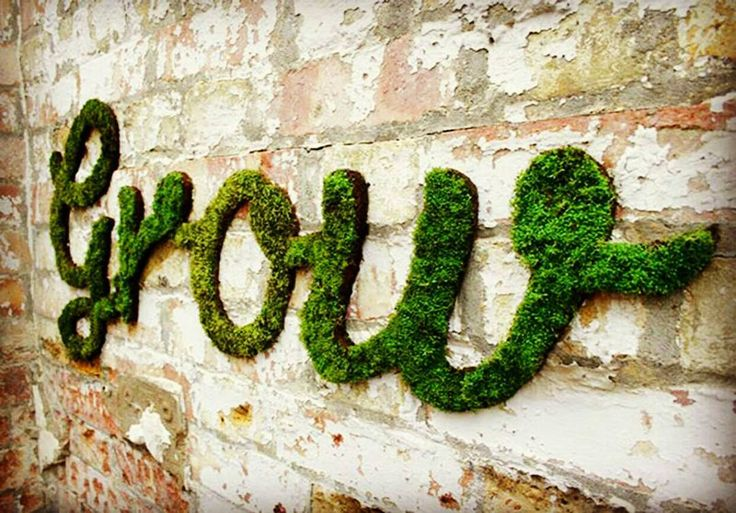 Moss graffiti is amazing! Here is how to DIY http://buff.ly/2bL3XX5