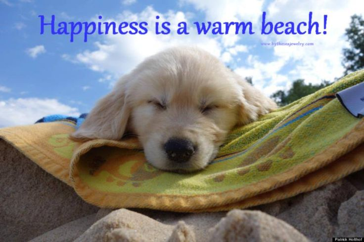 Happiness is a warm beach!