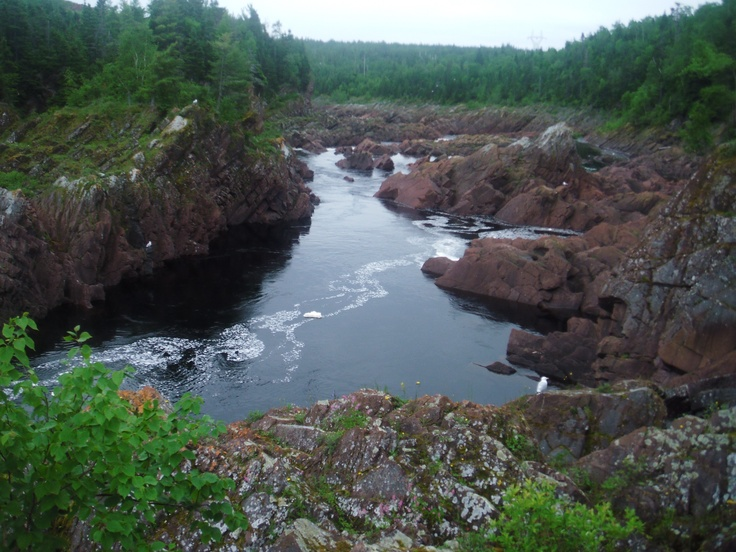 Salmon ladder, Grand falls-Windsor, Newfoundland in the summer time
