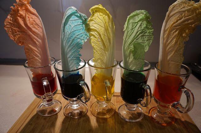 kreatywnyMaks: Kolorowy eksperyment
