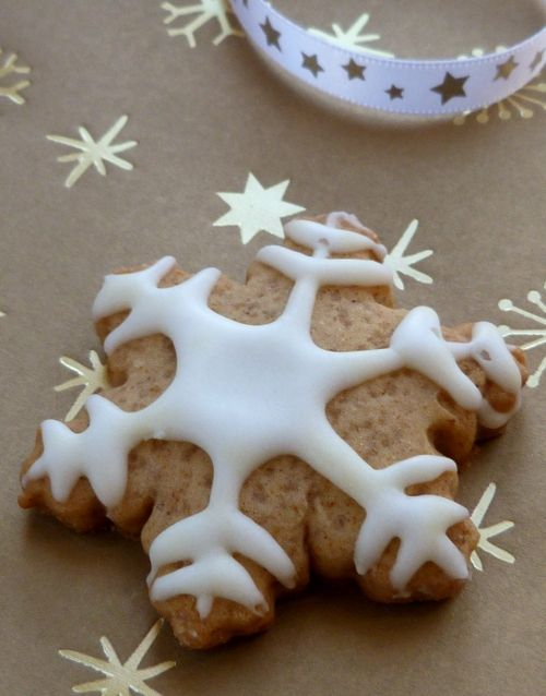 Biscuits-noel-epices0