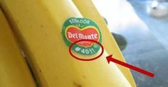 Queste etichette contengono informazioni importanti.