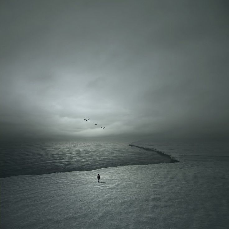 Artwork Type: Print Medium: Giclee Printing Pigment Inks on Museum Grade Fine Art Digital Archival Paper Artwork Description: Signs of Life by Philip McKay fuses the timeless elegance of black and whi