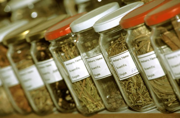 Nigerian Traditional Medicine Practitioners say they can treat Buhari