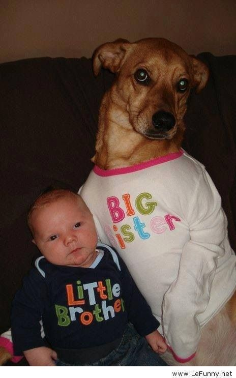 Big Sister onsie for doggy